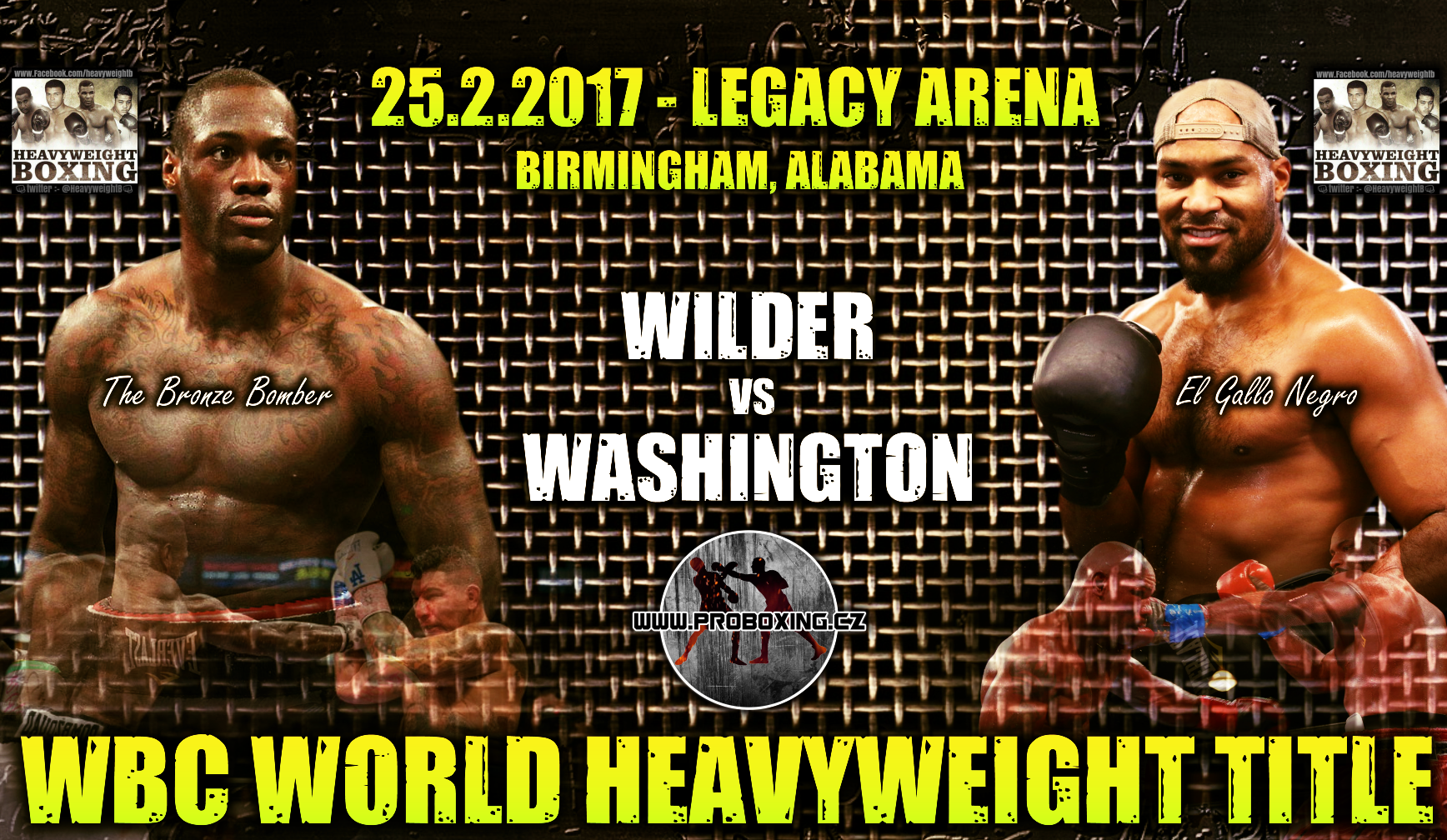 Deontay Wilder vs Gerald Washington